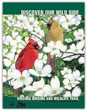 VA Birding Wildlife Guide